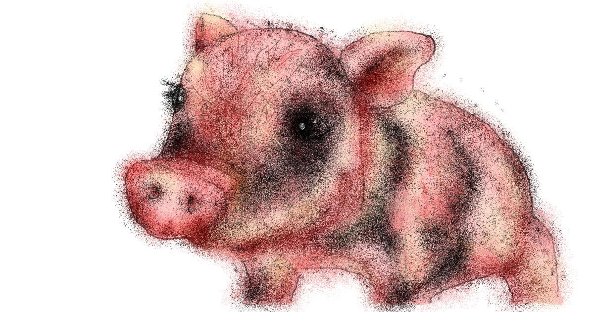 Pig drawing by Stephanie