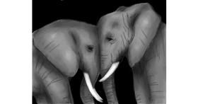 Elephant drawing by Sophie_draw24
