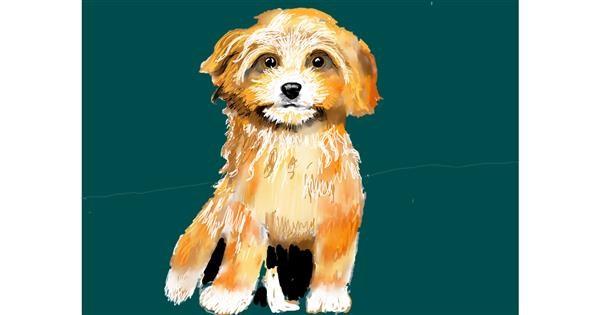 Dog drawing by SAM 🙄AKA Margaret
