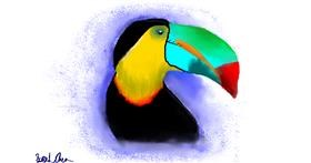 Drawing of Toucan by saraharts
