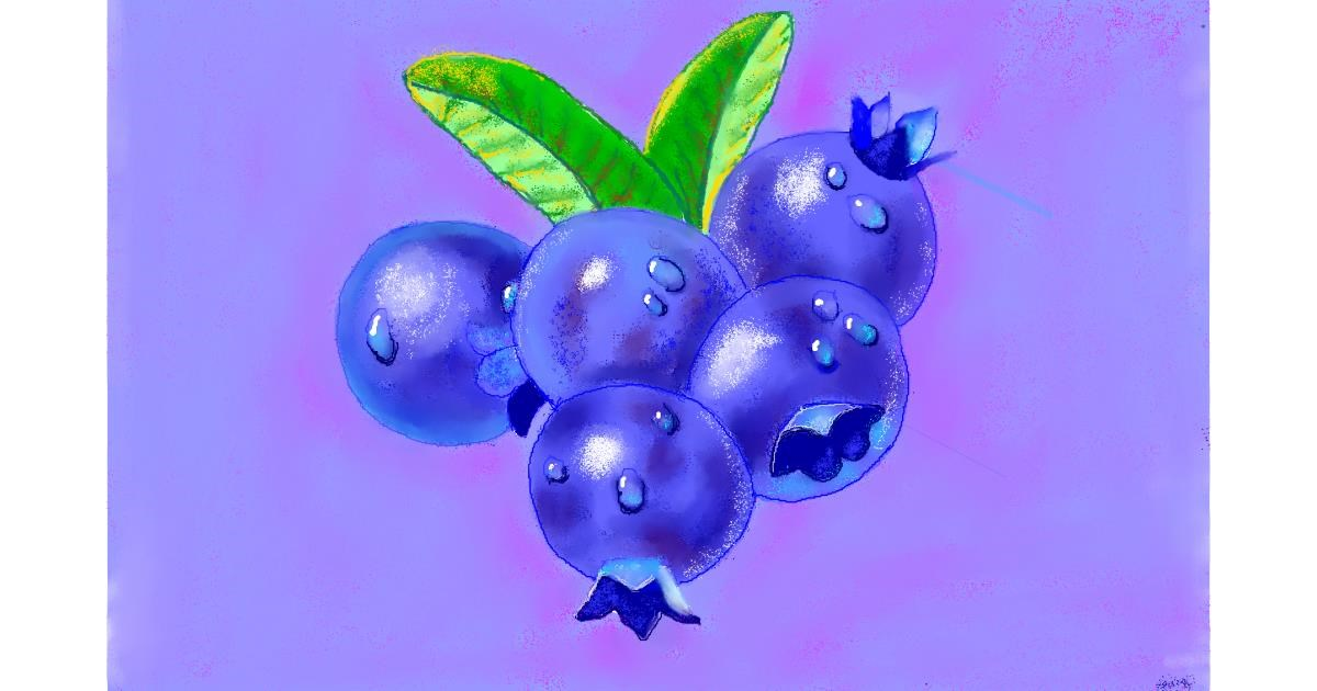 Blueberry drawing by GJP