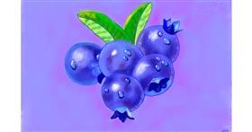 Drawing of Blueberry by GJP