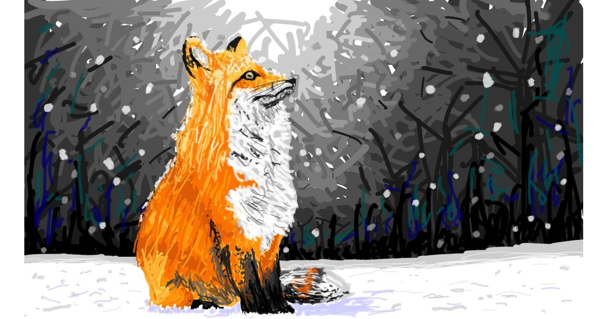 Fox drawing by Sam