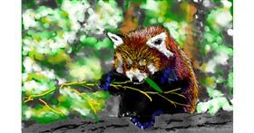 Red Panda drawing by teidolo