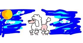 Poodle drawing by barbiana