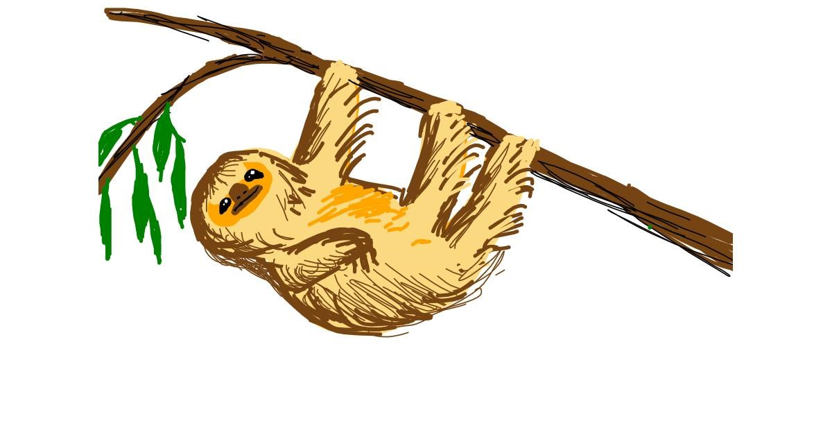 Sloth drawing by Luxembourg