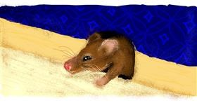 Drawing of Mouse by Paranoia