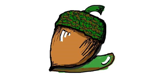 Acorn drawing by Janny Boy