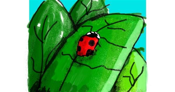 Ladybug drawing by Data