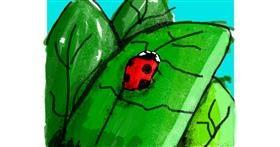 Ladybug drawing by Data