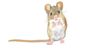 Drawing of Mouse by GJP