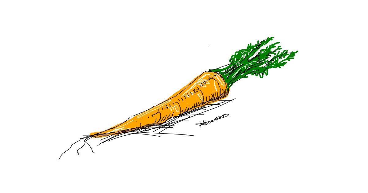 Carrot drawing by Hannah
