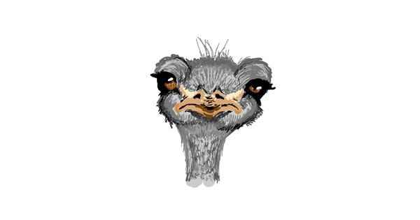 Ostrich drawing by Whispful
