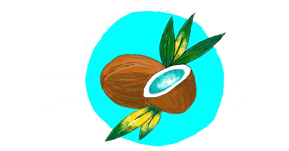 Drawing of Coconut by Darta