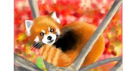 Red Panda drawing by RadiouChka
