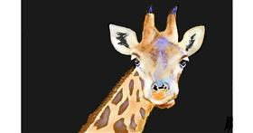 Giraffe drawing by GJP