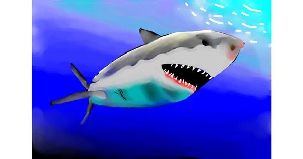 Shark drawing by being artistic
