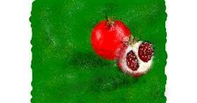 Pomegranate drawing by Nonuvyrbiznis
