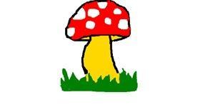 Drawing of Mushroom by MPK