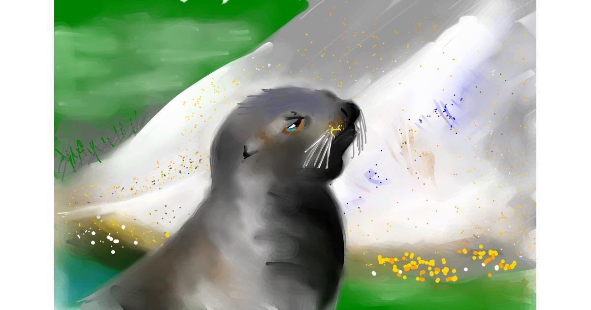 Drawing of Seal by Rak
