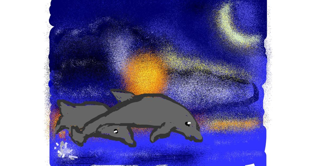 Dolphin drawing by Lori