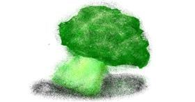 Broccoli drawing by cookie karr