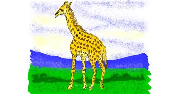 Giraffe drawing by Cherri