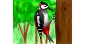 Woodpecker drawing by Rizz