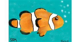 Clownfish drawing by Banana