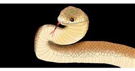 Drawing of Snake by leonardo de vinci