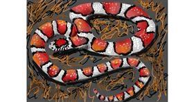 Snake drawing by SAM AKA MARGARET 🙄