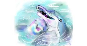 Dolphin drawing by Kai 🐾