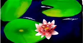 Drawing of Water lily by Ryu
