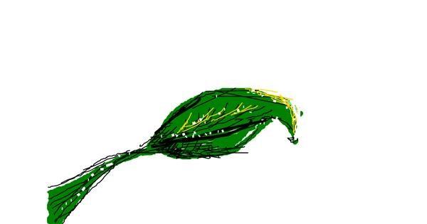 Leaf drawing by Fay