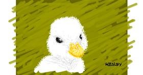 Duck drawing by wesley