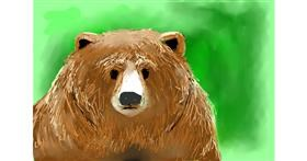 Bear drawing by Emit