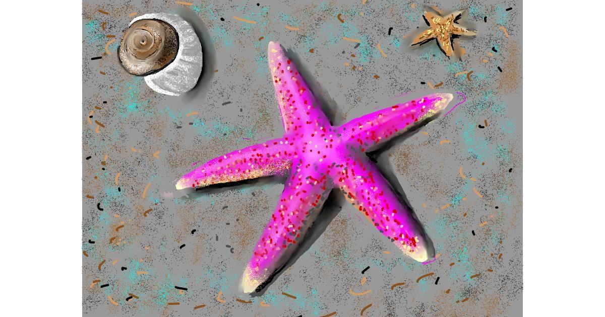 Starfish drawing by SAM 🙄