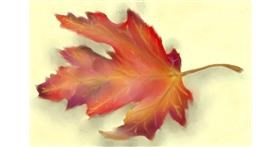 Drawing of Leaf by Wizard