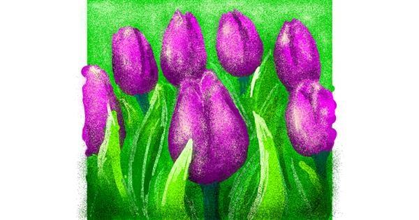 Tulips drawing by yawnna