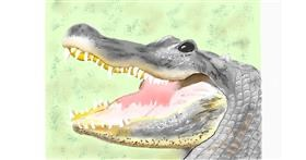 Alligator drawing by GJP