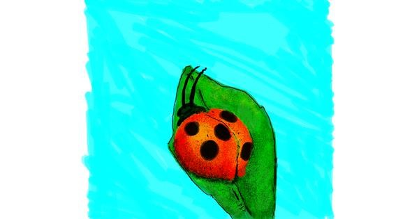Ladybug drawing by Dettale