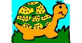Tortoise drawing by Anita
