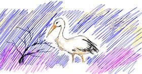 Stork drawing by Gray Echidna
