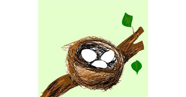 Nest drawing by Lea