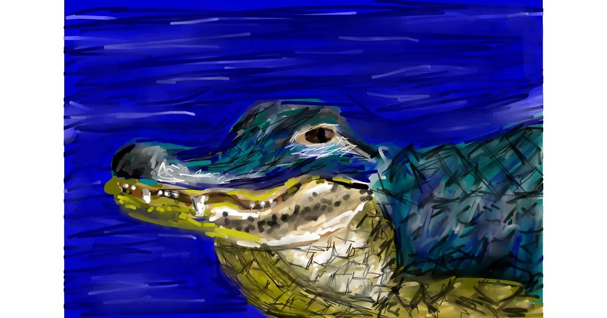 Alligator drawing by Soaring Sunshine