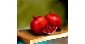 Pomegranate drawing by JSim