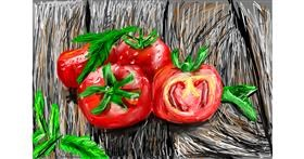Tomato drawing by Soaring Sunshine
