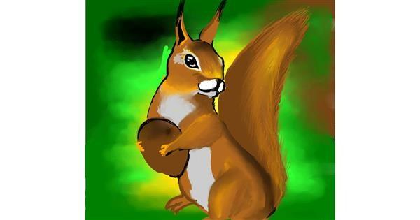 Squirrel drawing by 🌏rhythm💐