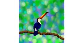 Drawing of Toucan by Joze