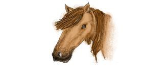 Horse drawing by Stephanie
